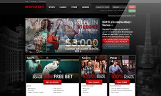 Bovada Sportsbook Review - Why They are the Number 1 US Book